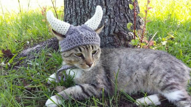 viking_cat_hat_3