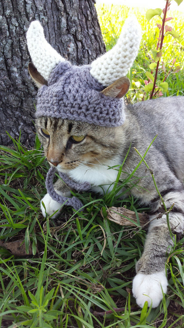 viking_cat_hat_4