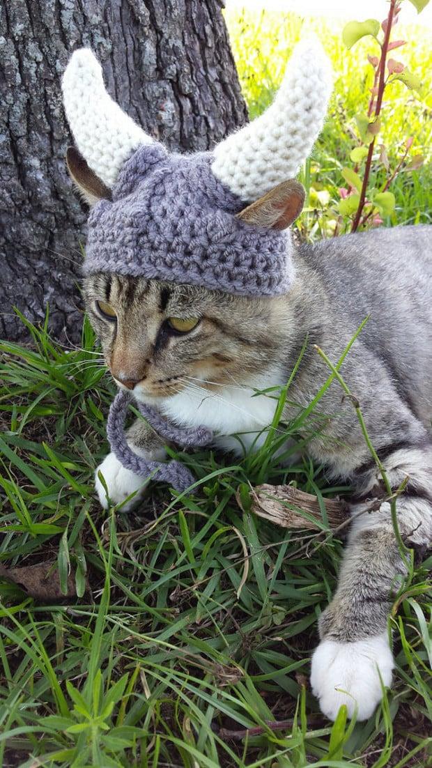 viking_cat_hat_4