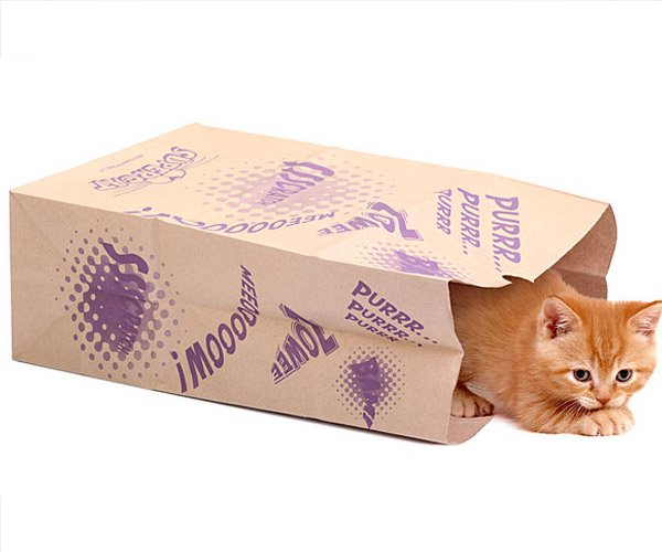 Catnip Caves Let the Cat out of the Bag