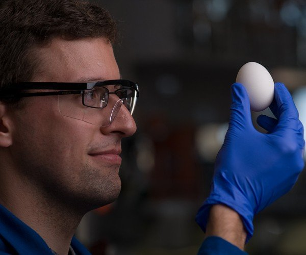 "Chemists Figure out How to ""Unboil"" Egg Whites: Welcome to the Future"