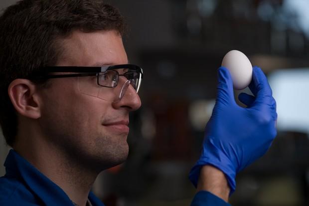university_of_california_irvine_unboil_egg_white_protein_1