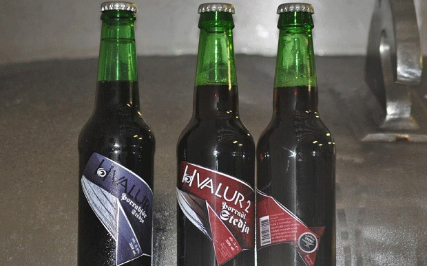 whale_testicle_beer_hvalur_1