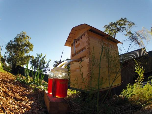 flow-hive-960