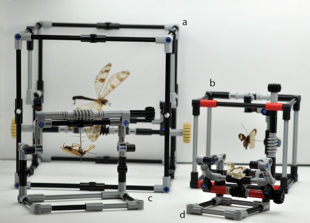 lego_pinned_insect_manipulator_by_natural_history_museum_london_1