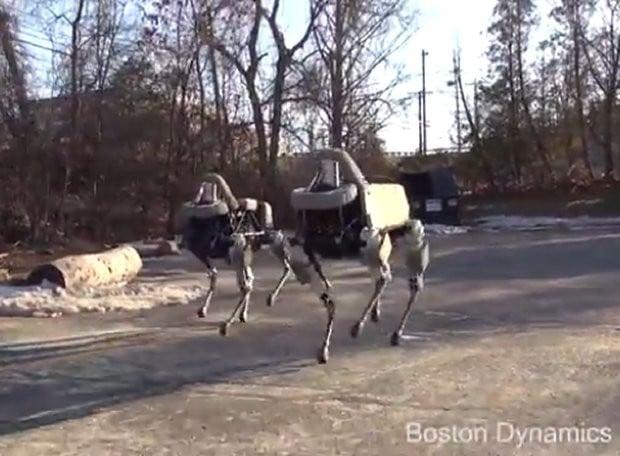 spot_robot_1