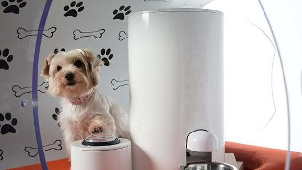 samsung_dog_kennel_2