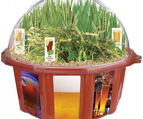 Grow Your Own Literal Beer Garden