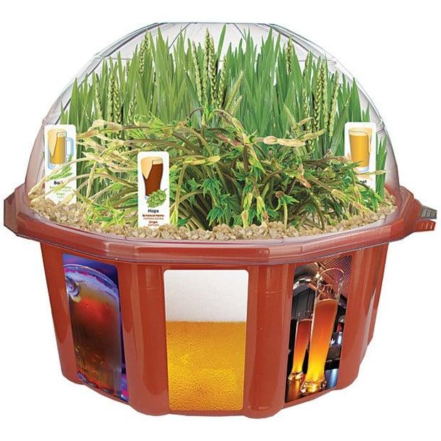 beer-garden-1