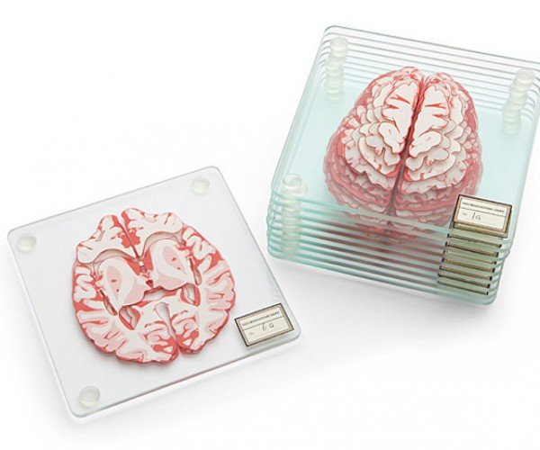 Brain Specimen Coasters are Perfect for Mad Scientists