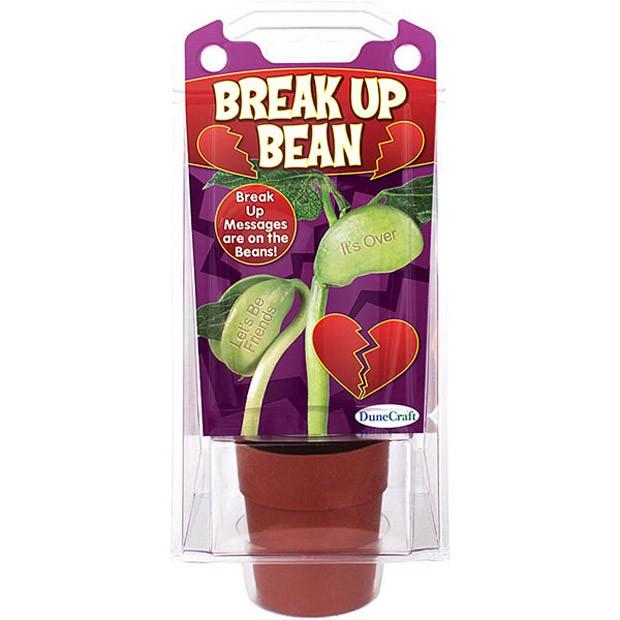 breakupbean-2