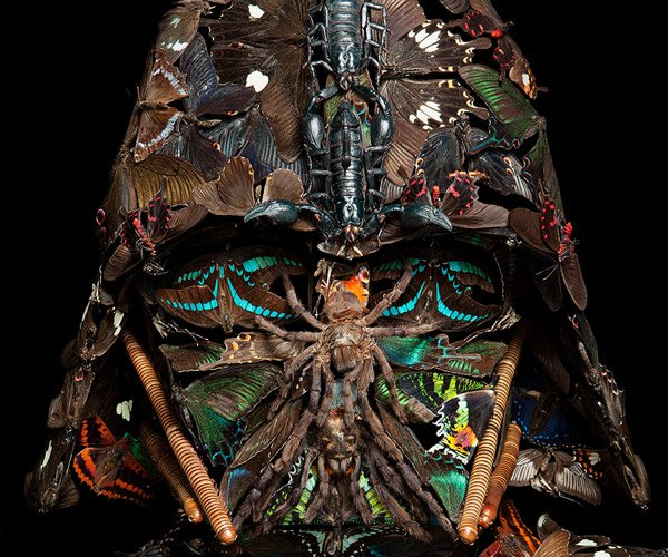 This Darth Vader Is Made of Bugs