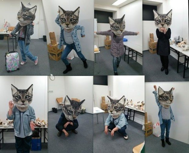giant_cat_head_3