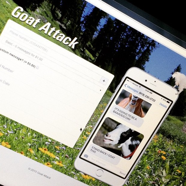 goat_attack_1