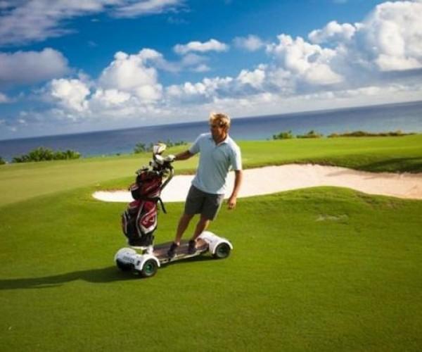 Skateboard + Golfcart = Golfboard