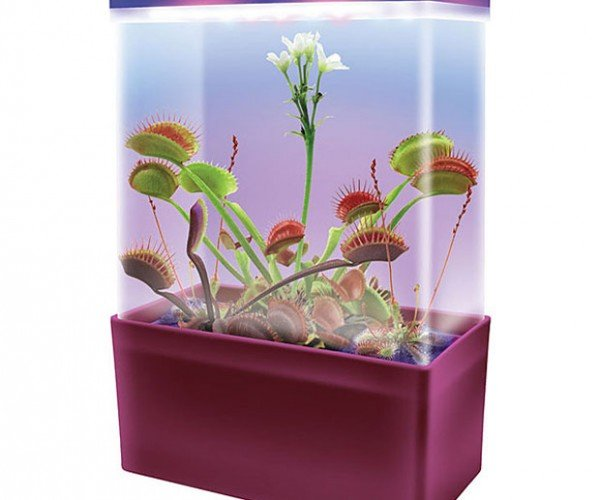 Light Cube Lets You Grow Carnivorous Plants: Feed Me Seymour!