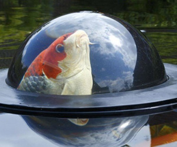Floating Fish Dome Lets Fish Break the Surface