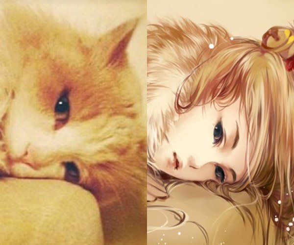 Artist Draws Characters Based on Real Cats: WilyGirls & WilyBoys