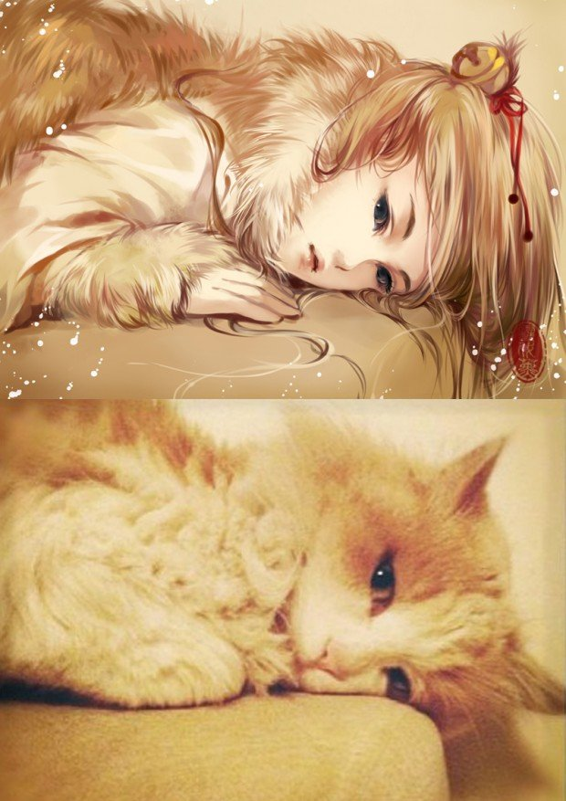 illustrations_based_on_cats_by_xuedaixun_1
