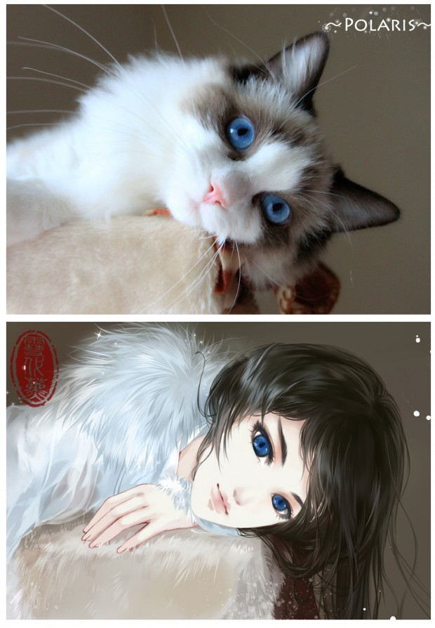 illustrations_based_on_cats_by_xuedaixun_2