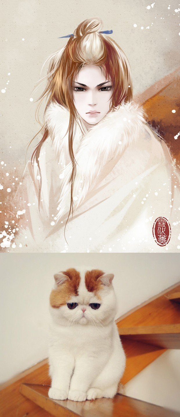 illustrations_based_on_cats_by_xuedaixun_4