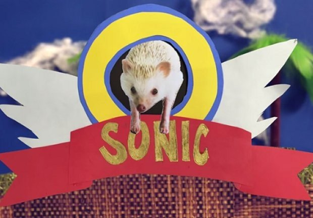 sonic_real_1