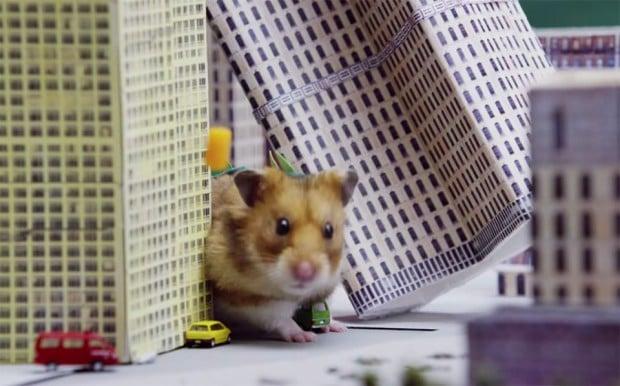 tiny_hamster_godzilla_1