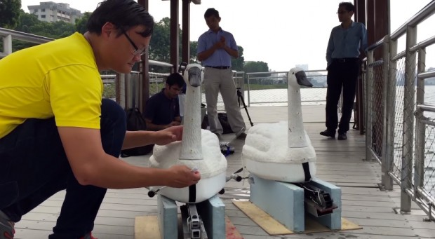 nuswan_robot_swan_by_national_university_of_singapore_2