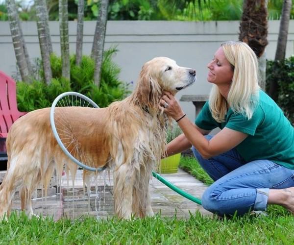 Woof Washer 360 Makes Washing the Dog Easy