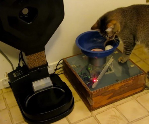 Automatic Feeder Mod Makes Cat Work for Food