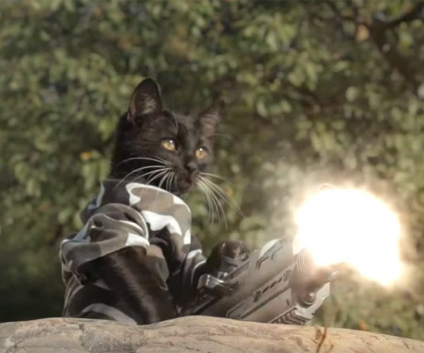 Cats vs. Zombies Should be a Show