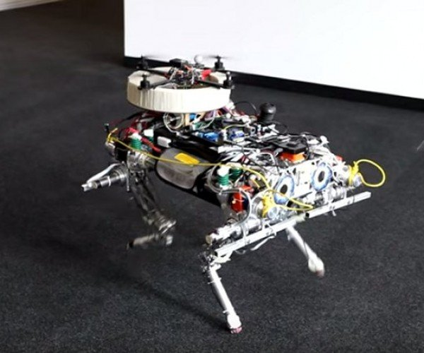 Robotic Dog Launches a Drone from Its Back