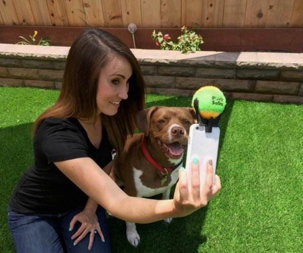 Pooch Selfie Makes Dogs as Self-Absorbed as Their Masters
