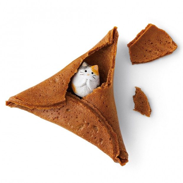 cat_fortune_cookies_1