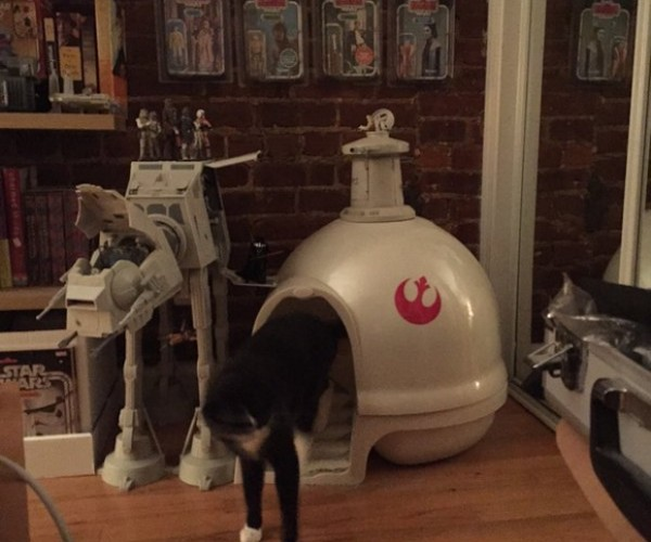 The Empire Strikes Cat: Echo Base Litter Box