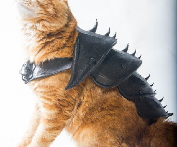 3D Printed Cat Armor: Meowster of the Universe