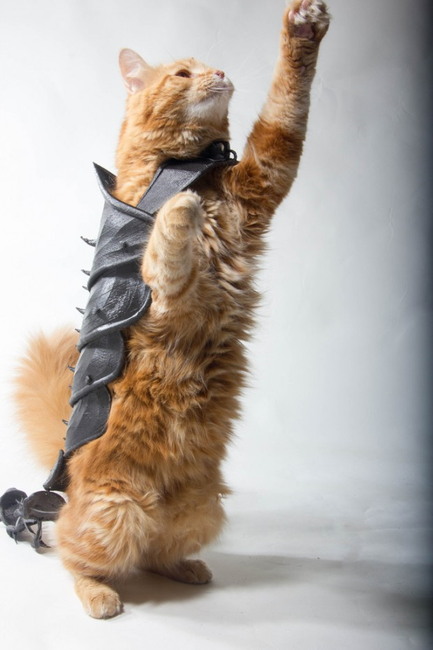 3d_printed_cat_armor_by_jwall_print_that_thing_3