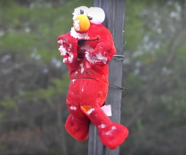 Tickle Me Elmo Gets Roasted by a Jet Engine: Melt Me Elmo