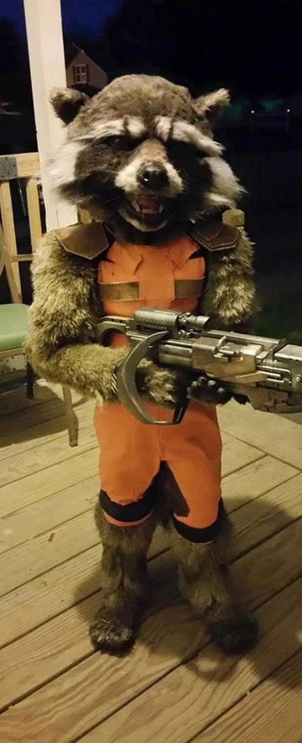 DIY Kid's Rocket Raccoon Costume: Guardian of the Front ... Raccoon Face