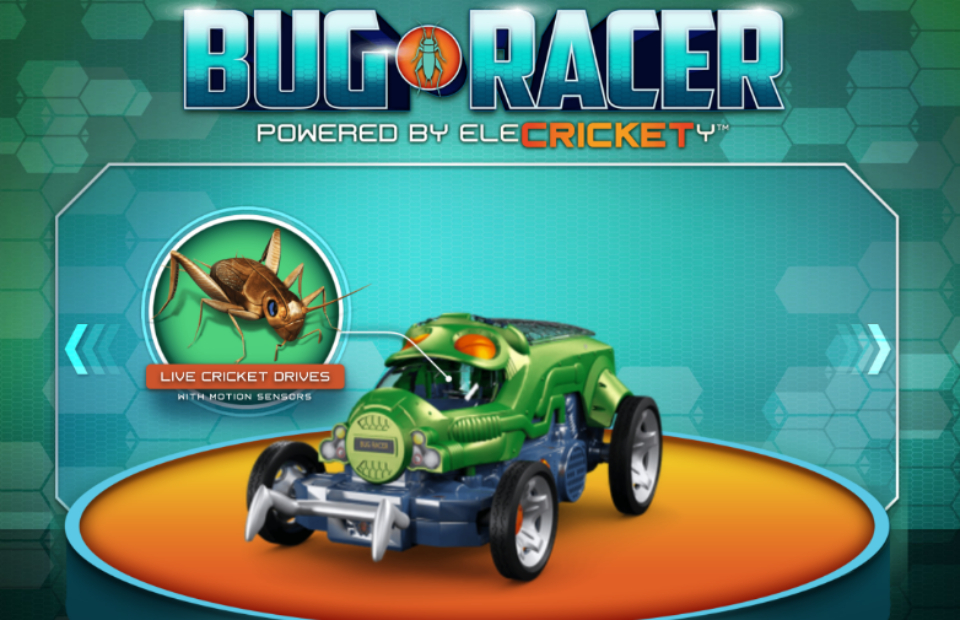 Hacked Racing Toys : Mattel s bug racers are steered by live insects technabob
