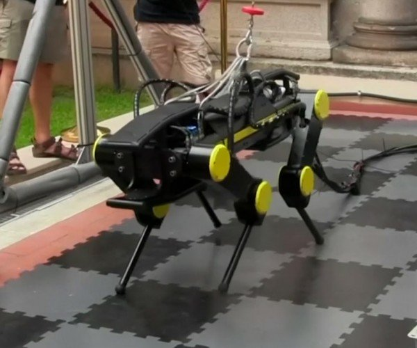 The HyQ2Max Robot Can Stand Itself up in Rugged Terrain