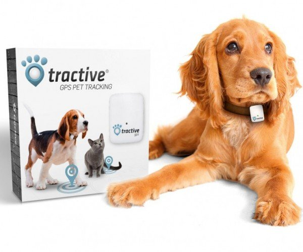 Deal: Save 23% on the Tractive GPS Pet Tracker