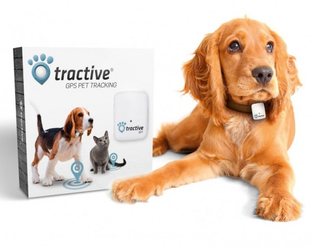 tractive_gps_pet_tracker_1