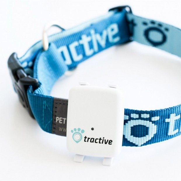 tractive_gps_pet_tracker_2