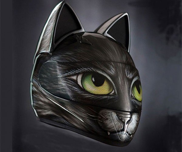 Cat Motorcycle Helmets are Pawesome