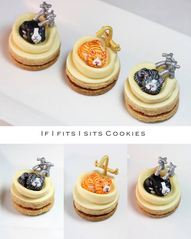 cat_cookies_1