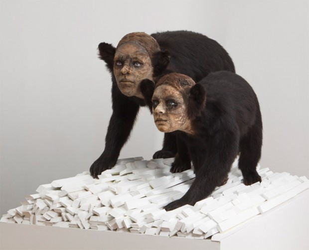 kate_clark_taxidermy_sculptures_2