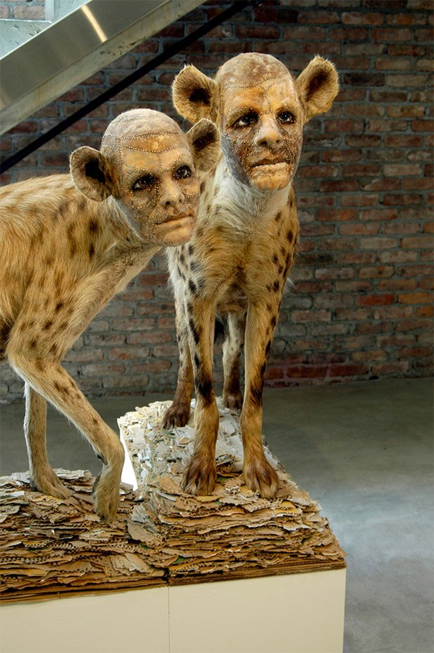 Kate Clark's Human-Headed Taxidermied Animals ...Three Headed Animal Drawing