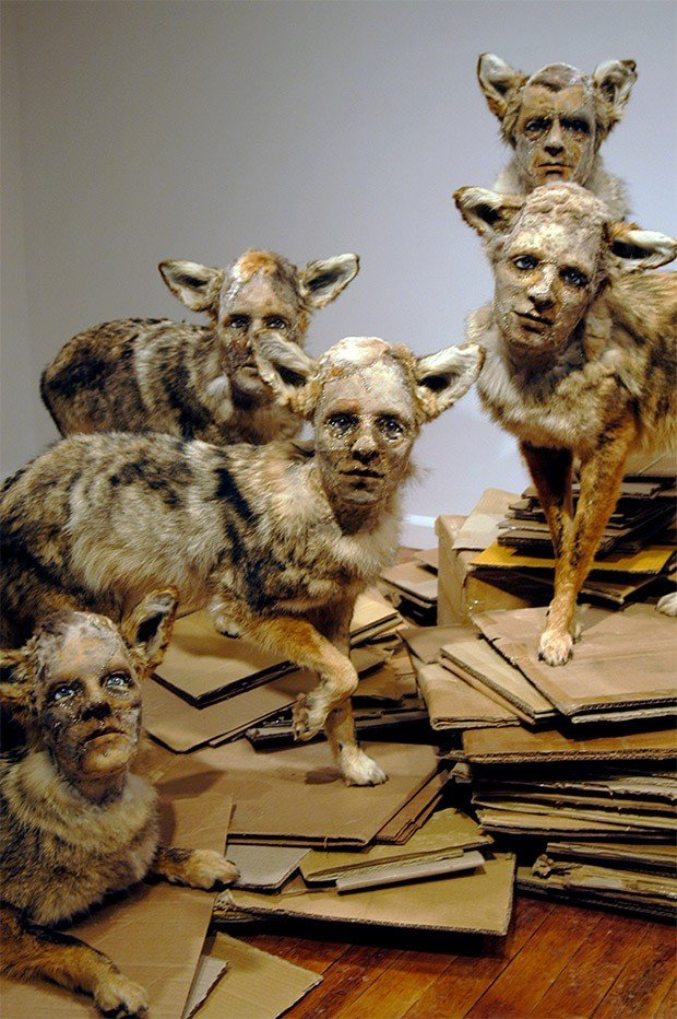 kate_clark_taxidermy_sculptures_6