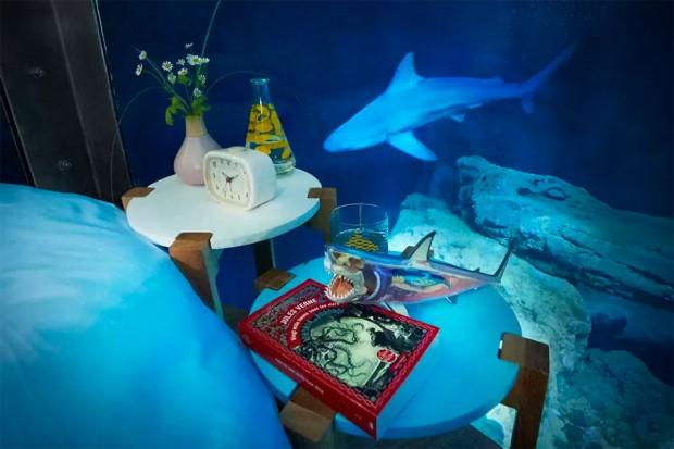 airbnb_shark_room_3